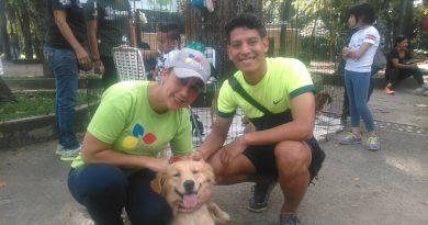 Frente Preventivo se suma al Movimiento Animalista de Venezuela (1)
