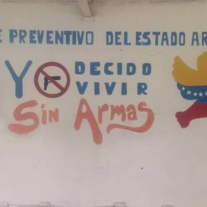 """""""Colores por el Desarme"""" (1)"""