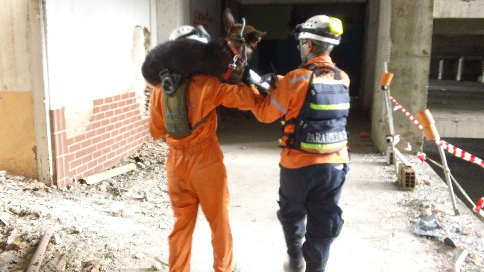 Unidad k-sar realiza prácticas para fortalecer capacidades de búsqueda y rescate (10)