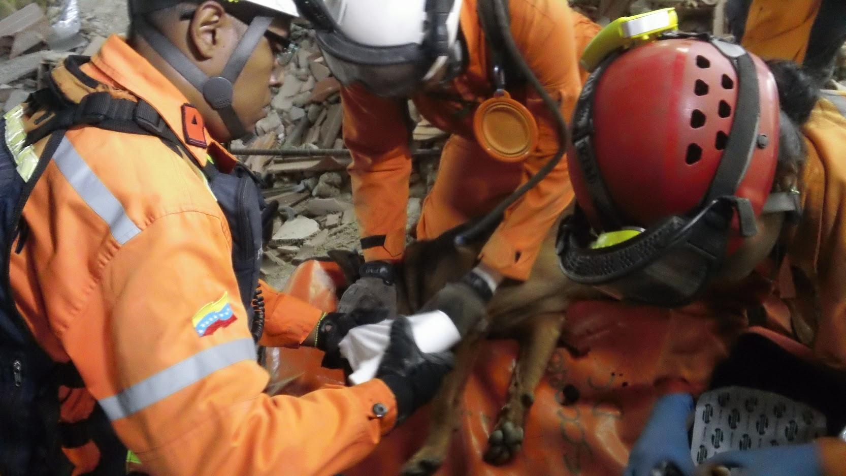 Unidad k-sar realiza prácticas para fortalecer capacidades de búsqueda y rescate (8)