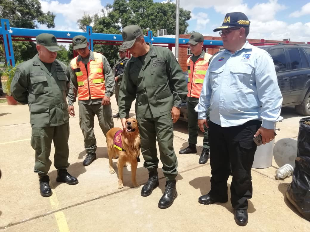 Incautados 182,77 kilogramos de marihuana ocultos en cuatro transformadores eléctricos en Anzoátegui (11)