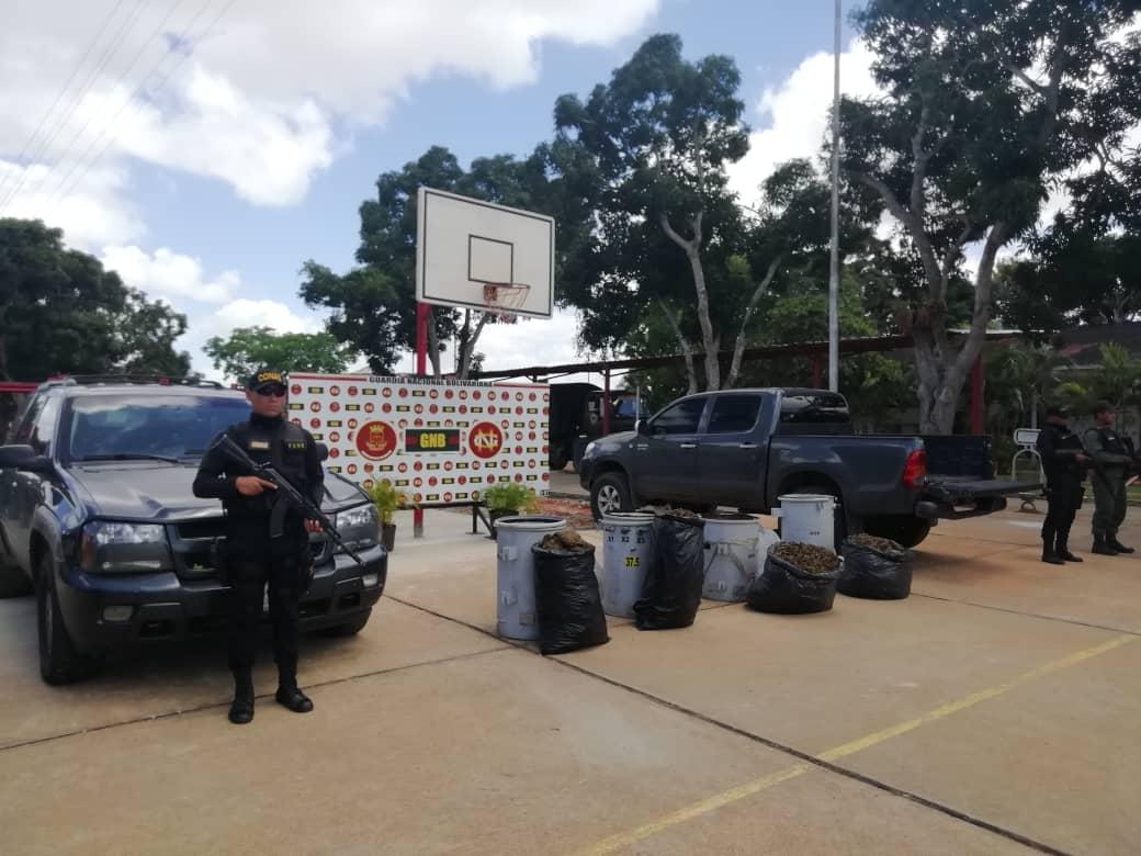 Incautados 182,77 kilogramos de marihuana ocultos en cuatro transformadores eléctricos en Anzoátegui (14)