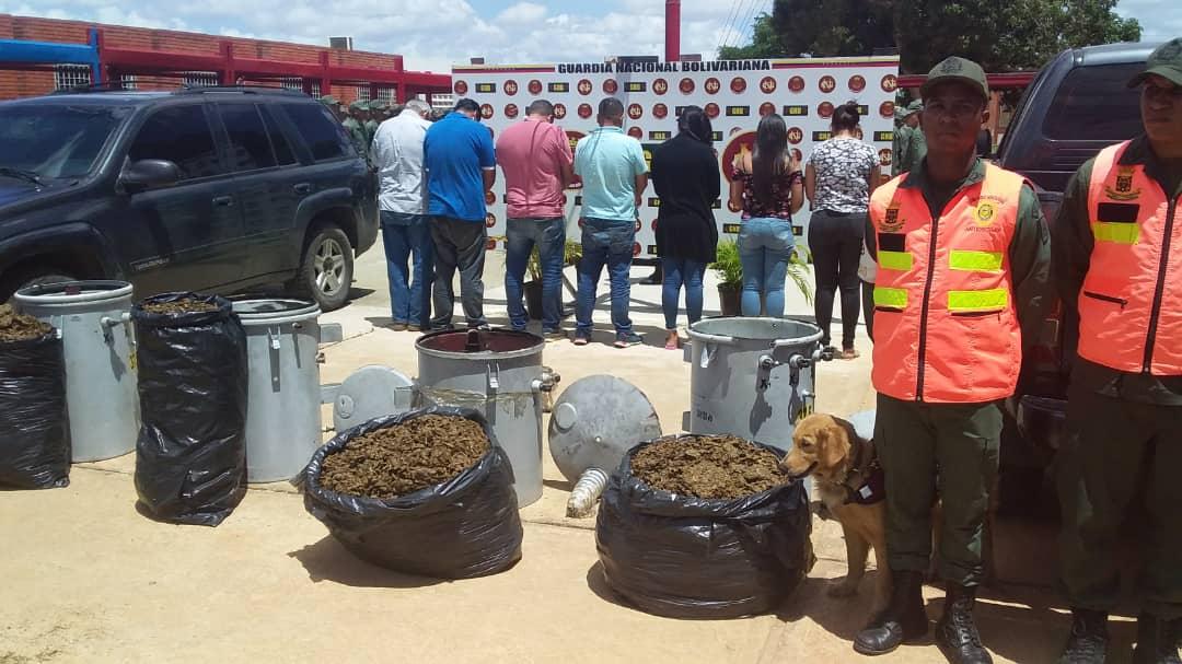 Incautados 182,77 kilogramos de marihuana ocultos en cuatro transformadores eléctricos en Anzoátegui (19)