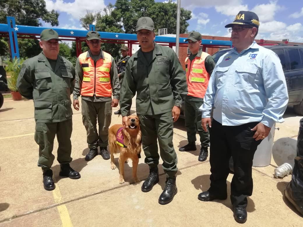 Incautados 182,77 kilogramos de marihuana ocultos en cuatro transformadores eléctricos en Anzoátegui (20)