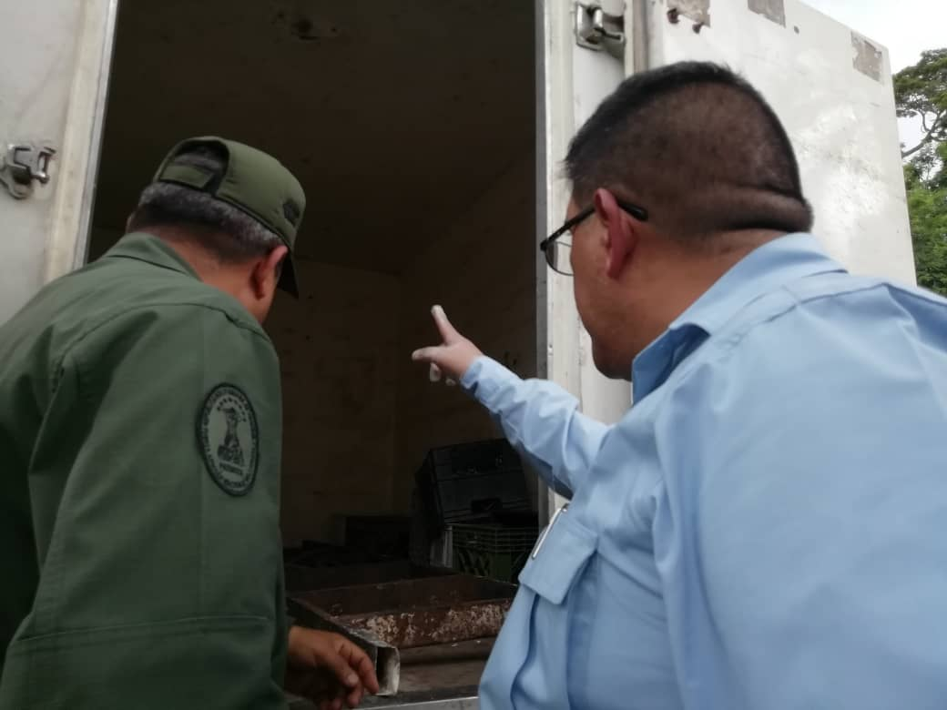 Incautan 239 panelas de marihuana en Yaracuy (4)