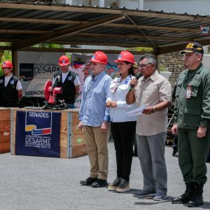 Mpprijp inutilizó 12 mil 921 armas de fuego en Caracas (10)