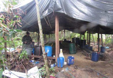 Destruidos 2 campamentos y 8 laboratorios con 13 toneladas de drogas en el Zulia